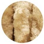 castor beige