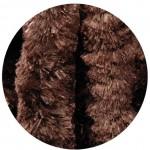 castor brun